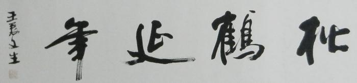 名称:松鹤延年